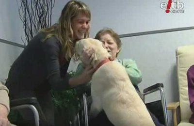 Terapia aistida por un perro en una residencia de 3ª edad
