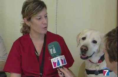 Laika la perra de terapia de la Residencia de Ortuella